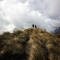 Backpackers crest a hill in the paramo of Colombia's Quindio Range. The paramo is a high-elevation moorland ecosystem found only a handful of places in the world, all of which are near the equator. Photo by Emily Downing.- Woman In The Wild: Emily Downing