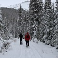 Snowshoeing is a great way to see the local trails.- 5 Reasons to Fall for Canmore Kananaskis in Alberta, Canada