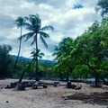 A gathering spot for volunteers at the fishponds of Kiholo. - Volunteering Vacations on Hawai'i's Big Island