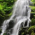 Fairy Falls.- Hiking Through the Years: 30+ Years in the Columbia River Gorge