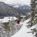 Drops are easy to come by in Powerhouse Peak's east bowl.- Backcountry Skiing in California