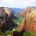 Observation Point, Zion National Park.- Ecotherapy: Exploring People's Connections with Nature