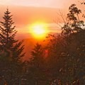 Sunset in the Smoky Mountains.- Ecotherapy: Exploring People's Connections with Nature