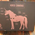 Horse chakras.- Yoga and Hoofbeats: Rejuvenation in the heart of Montana