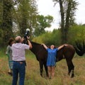 Glamour shots with the horses.- Yoga and Hoofbeats: Rejuvenation in the heart of Montana