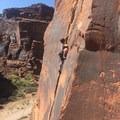 Climbing at Indian Creek.- Moab: Women's Climbing Clinics