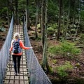 While exploring the Fiery Gizzard Trail, you'll also find your inner five-year-old in this storybook like destination - complete with a swinging bridge. - 10 Must-Do Hikes Near Nashville, Tennessee