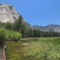 Kings Canyon National Park.- Ecotherapy: Exploring People's Connections with Nature