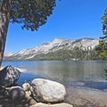 Tenaya Lake, Yosemite National Park.- Ecotherapy: Exploring People's Connections with Nature