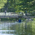 Paddling along the Big Sable River.- Paddler's Guide to Ludington, Michigan