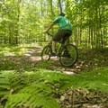 Riding the Cartier Park Bike Path.- 5 Incredible Adventures in Ludington, Michigan