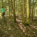 Trails diverge on the Cartier Park Bike Path for easier or harder routes.- 5 Incredible Adventures in Ludington, Michigan