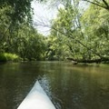 A typical view along the Pere Marquette River.- Paddler's Guide to Ludington, Michigan