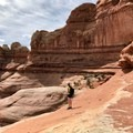 Big Spring Canyon.- Finding Needles in the Desert: Exploring in Canyonlands National Park