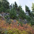 Fall color along the trail.- Fall Color in Indian Heaven Wilderness, WA