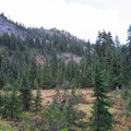 Bird Mountain.- Fall Color in Indian Heaven Wilderness, WA
