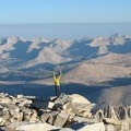 Inyo National Forest, California.- Five Reasons Wildlife Appreciate National Forests