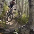 Navigating the aspens.- Mountain Biking in Park City