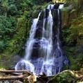 Kentucky Falls.- 19 Adventures Between You and The Oregon Coast