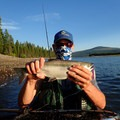 With some research and google maps you can find some really productive fisheries away from the crowds. - Checklist for Choosing Your Next Fishing Lake