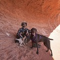 Nothing better than enjoying our public lands with the pups! Red Cliffs Reserve near St. George, Utah.- #WhyIHike: Kyle Jenkins
