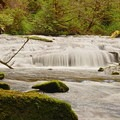Ledge Falls along Sweet Creek.- Where to Find Mushrooms in the Pacific Northwest