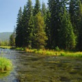 The Deschutes River headwater channel at Little Lava Lake.- Wednesday's Word - Deschutes