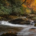 Little River in the Smokies. - Stunning Fall Adventures in the Central Appalachians