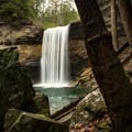 Greeter Falls is a part of the South Cumberland State Park.- Hidden Gems in Tennessee's Beautiful State Parks