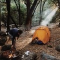 West Fork Trail Camp, first-come, first-served in Angeles National Forest. Photo by Duke Schillaci via Hipcamp.- Your Guide to Last-Minute Camping