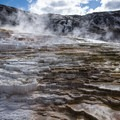 Mammoth Hot Spring.- Wolf Tracking in Yellowstone National Park