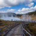 Walkway over a geyser field.- Wolf Tracking in Yellowstone National Park