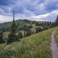 Scott's Bypass Trail leading to the crest.- Mountain Biking in Park City
