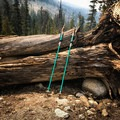 The Halite 7075 WSD poles come in a beautiful light turquoise color with natural cork handles for an ergonomic and sleek design.- Mountainsmith Halite 7075 WSD Trekking Poles