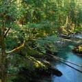 Ohanapecosh River- Wednesday's Word - Ohanapecosh