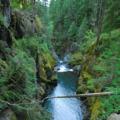 Ohanapecosh River chasm.- Wednesday's Word - Ohanapecosh