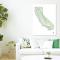 Outdoor Project wall poster maps available for California, Oregon, Washington, and Colorado.- Last Minute Gifts for Adventurers