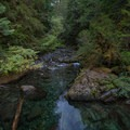 Enjoying the calm sounds of Opal Creek.- Asleep in the Arms of Ancients