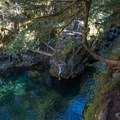 Taking a quick dip in Opal Pool.- Asleep in the Arms of Ancients