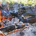 Who needs a pan or a stove when you have a flat rock and a fire.- Bringing a Camping Ethic Back Home