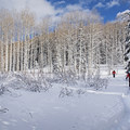 Backcountry skiers at Willow Heights.- Salt Lake City Inversion Survival Kit