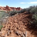 Cryptobiotic soil.- 10 Things You Should Know Before Visiting Arches National Park