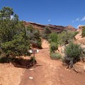 Primitive Trail enters a wash marked with signs.- 5 Must-do Hikes in Arches National Park
