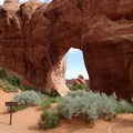 Pine Tree Arch.- 5 Must-do Hikes in Arches National Park