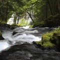 View of the upper stream from Panther Creek Falls.- Meet Kat Dierickx, Contributor of the Month