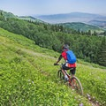 Mountain biking toward the Mid-Mountain Trail above Deer Valley.- 5 Reasons You Have to Visit Park City, Utah in the Summer