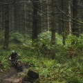 - Seattle - An Unexpected Mountain Bike Destination