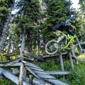 Wood is good.- Top 5 Mountain Bike Trails in Golden, British Columbia