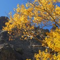 Pike Creek Mine Hike on Steens Mountain.- Favorite Fall Hikes