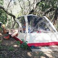 Creekside camping at the Headwaters Riparian Sanctuary in Vacaville, California, with trails to explore right outside your tent flap! Photo by Sabrina via Hipcamp. - Your Guide to Last-Minute Camping
